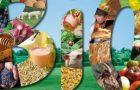 Nutrition : quelques vérités bonnes à savoir sur le Bio !