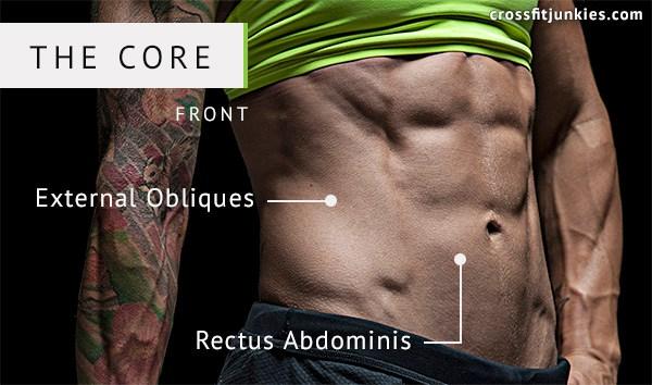 7 Exercices / Workouts pour des abdominaux sculptés et un tronc puissant