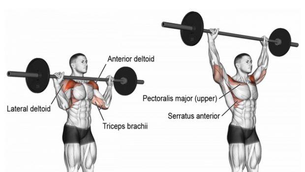 10 exercices excellents pour des épaules fortes et puissantes!