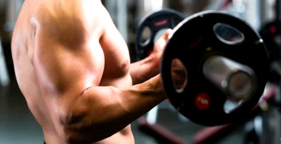 5 exercices pour développer vos biceps !
